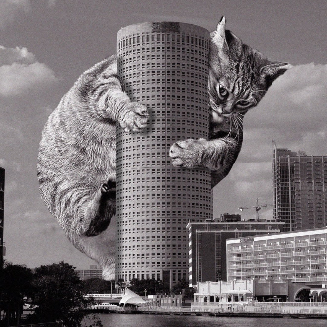 This Instagram Account Combines Brutalist Architecture With Giant Cats